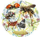 El potencial del microbioma en la biotecnología